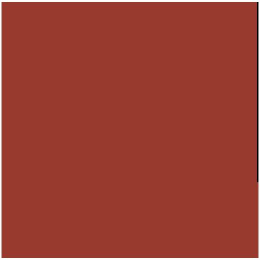 Можливість провести оцінку торгової марки, а потім поставити її на баланс та внести в статутний фонд підприємства